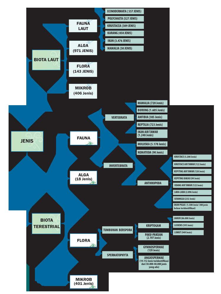 Klasifikasi Keanekaragaman Jenis di Indonesia (Sumber; LIPI 2014)