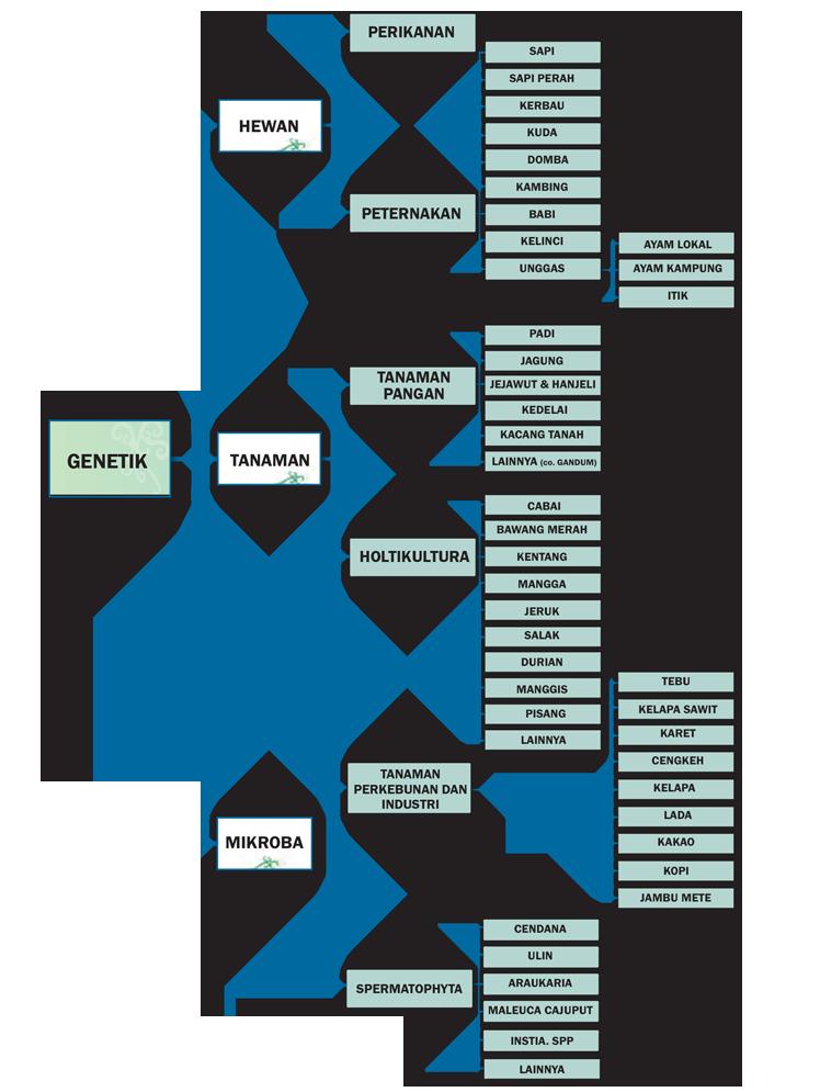 Klasifikasi Keanekaragaman Genetik di Indonesia (Sumber; LIPI 2014)