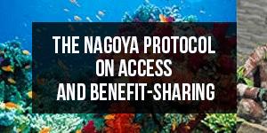 Nagoya-Protocol