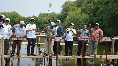 Hari Mangrove Sedunia